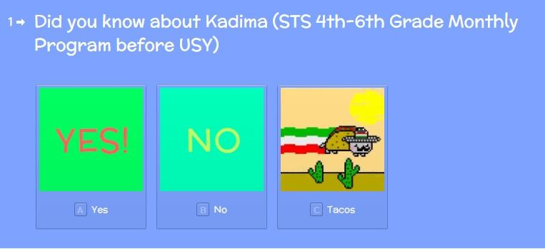Kadima Survey